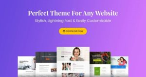 Astra Theme – Everything You Need to Build a Stunning Website v2.5.1 nulled